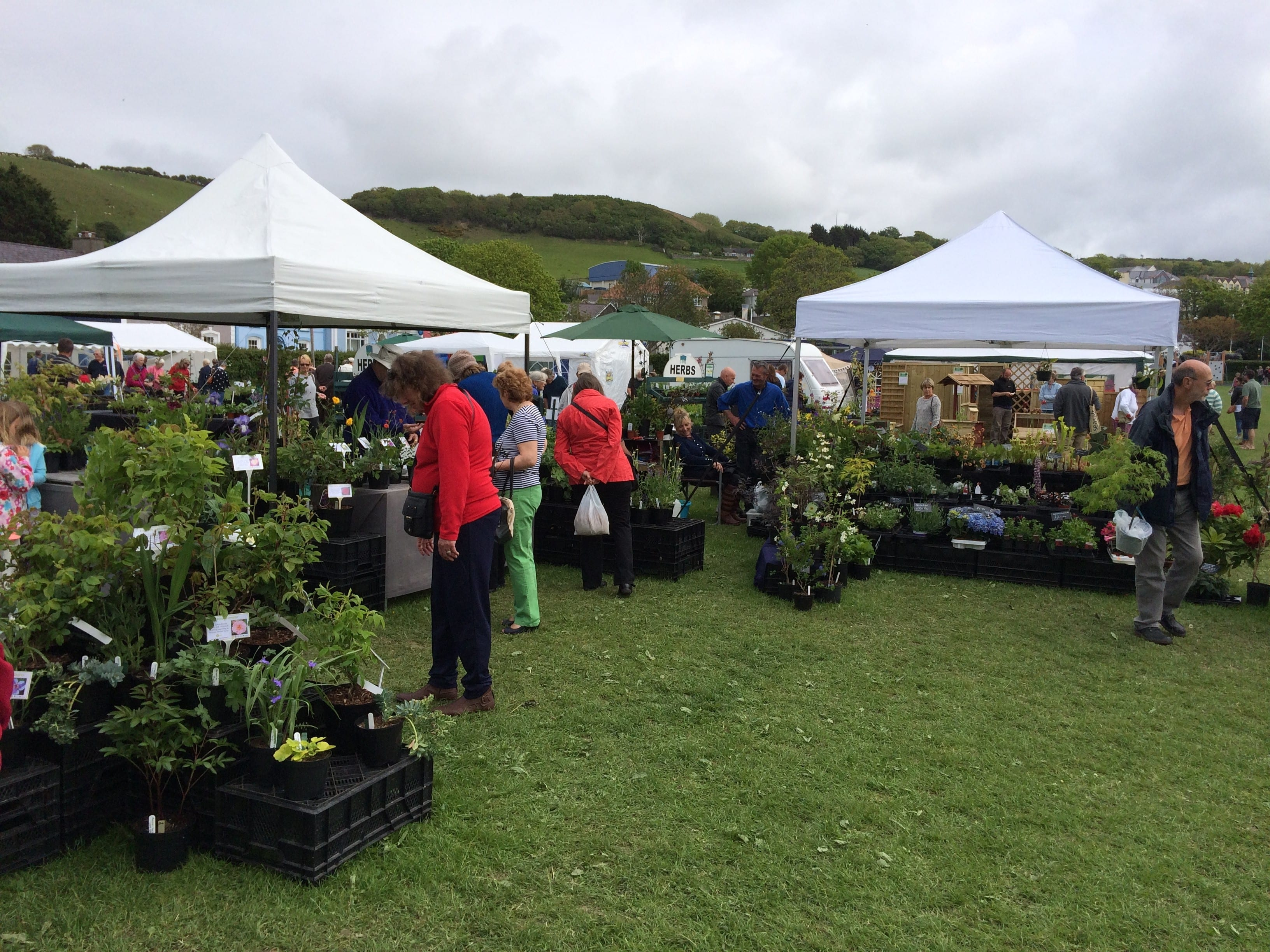 Ceredigion Garden & Craft Festival 2015